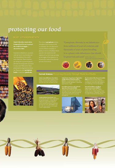 Maize - Protecting Our Food Panel