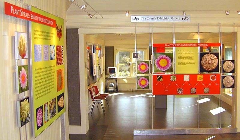 view of the church exhibition gallery with the plant spirals exhibit on display