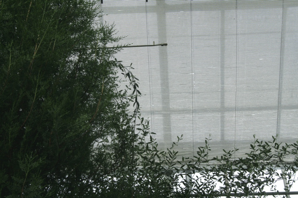Shading panels in the greenhouse