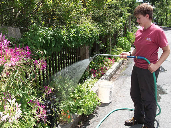 student watering
