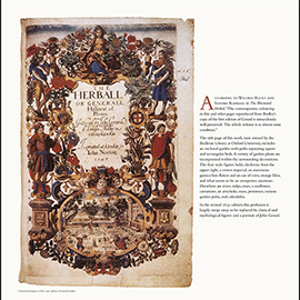 1597 edition of Gerard's Herbal panel