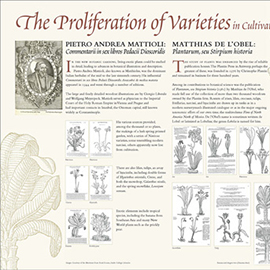 The Proliferation of Varieties information panel