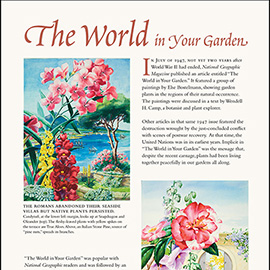 The World in your Garden National Geographic article, information panel