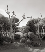 Places for the Spirit