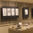 View of gallery wall with plant reconstruction drawings