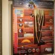 Earth evolution information panel