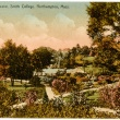 colorized photograph of trees and shrubs on campus