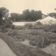 Systematics Garden bed with Lyman Conservatory in background
