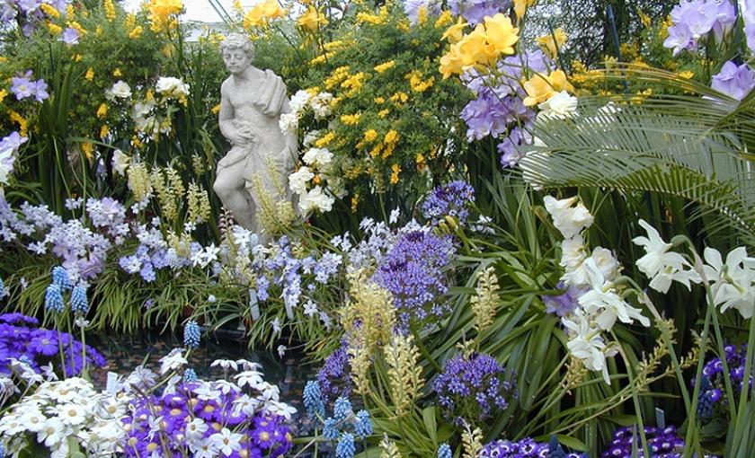 Charming Spring Bulb Show