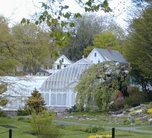 Lyman Conservatory in spring